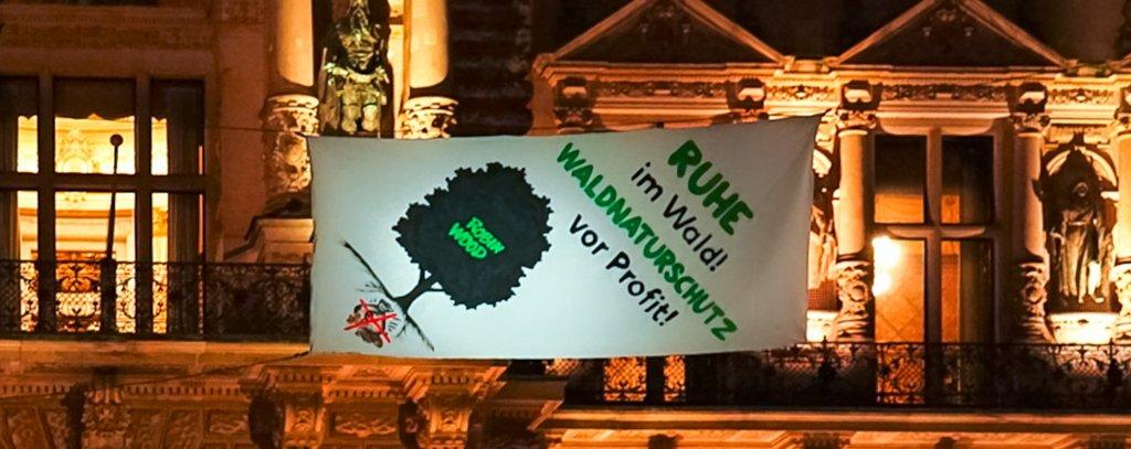 Ruhe im Wald - Waldnaturschutz vor Profit!