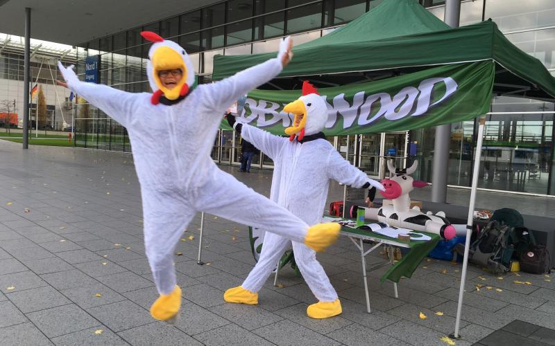 Foto tanzende Hühner 2