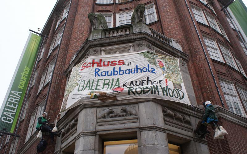 Schluss mit Raubbauholz bei Kaufhof! ROBIN WOOD-Protest in der Hamburger City, 23.2.15