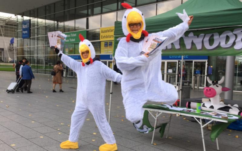 Foto tanzende Hühner