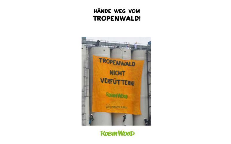 Flyertitel Tropenwald