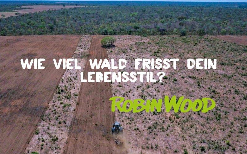 Entwaldungen für Soja in Brasilien
