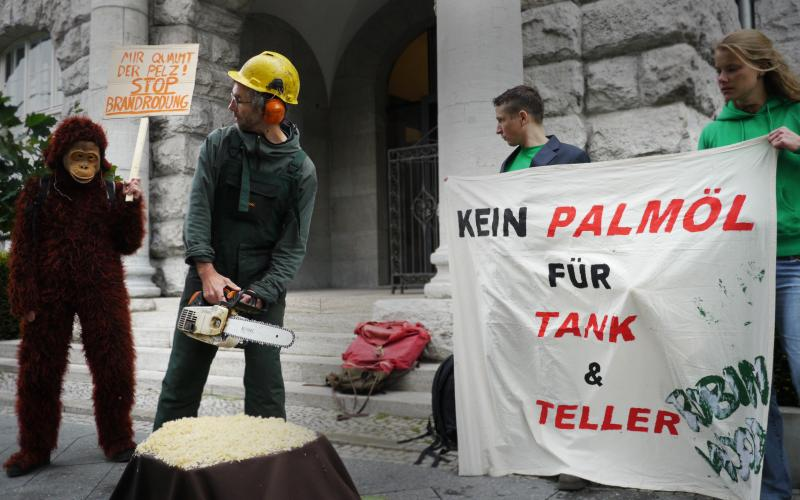 Aktion gegen Palmoel