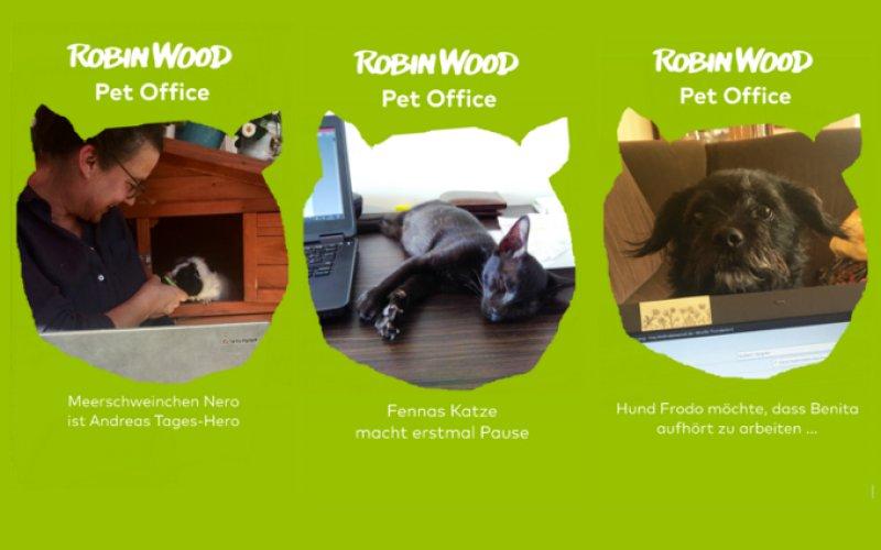 Bilder aus dem Pet Office