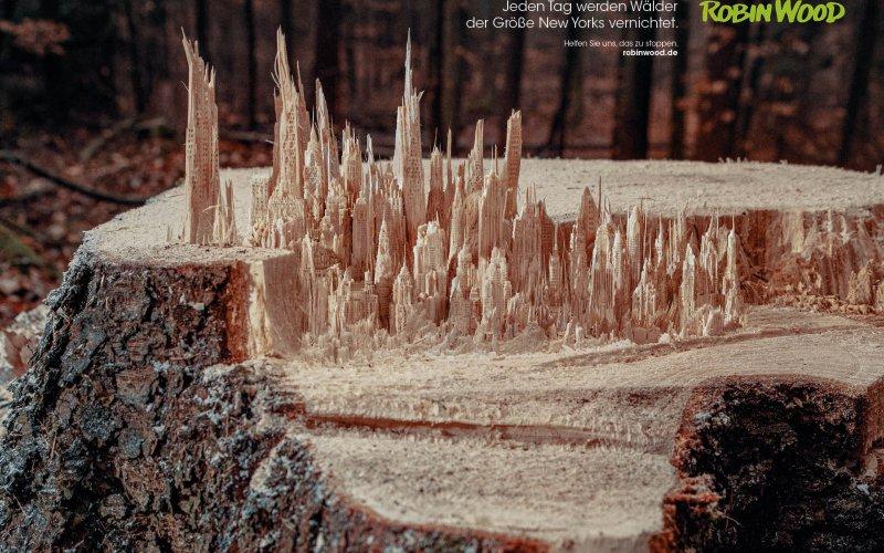 Motiv Waldabholzung, New York und Baumstumpf