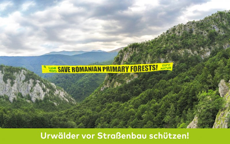 Aktionsfoto rumänien