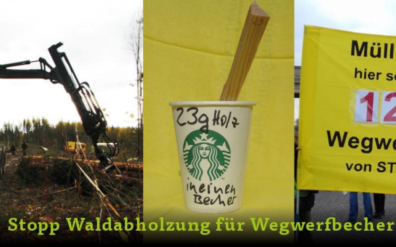 Collage Waldabholzung für Wegwerfbecher