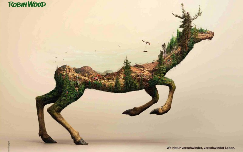 Verschwindende Tiere: Motiv Hirsch