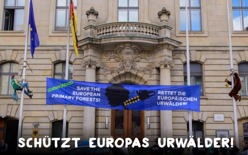 Aktionsfoto Urwaldprotest