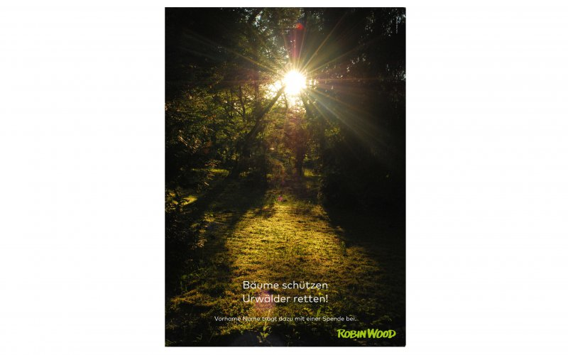 Ansicht Spendenurkunde Urwälder retten
