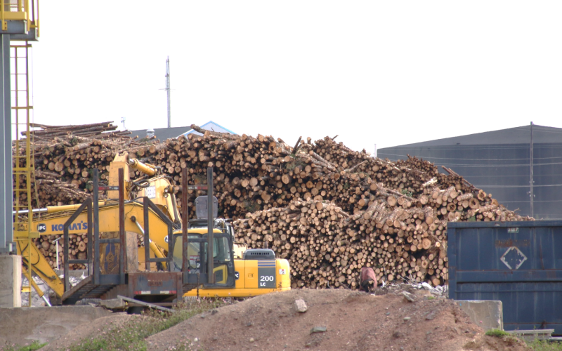Kanada Nova Scotia, Foto: ecology action centre
