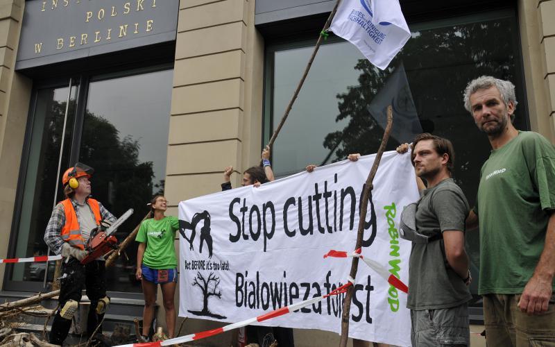 Berlin Protest Aktion zu Bialowieza Urwald