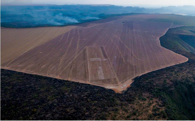 Luftbild von gerodeter Fläche im Amazonas-Regenwald